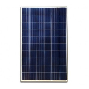 Panel Solar Fotovoltaico Eco Green de 165W